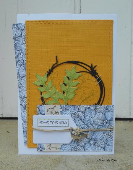 Défi #20 du 7 octobre : loto + galerie by Batchaka - Page 3 Dscn3113