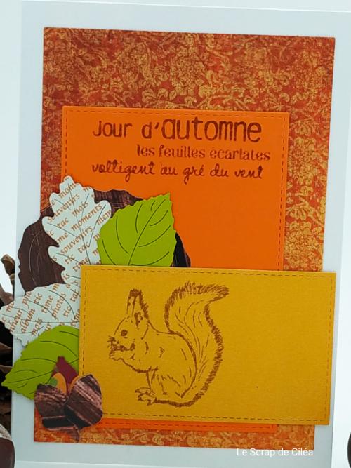Défi #21 du 21 octobre : Bingo colors + galerie by Mannie - Page 4 Img_2010