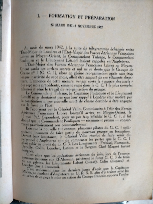 Insigne Normandie Niemen Img20253