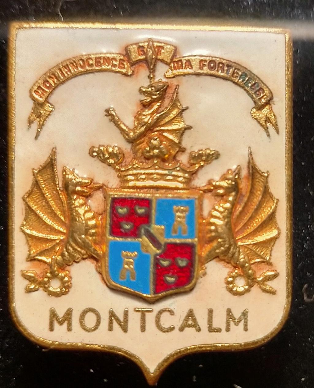 Insigne Cuirassé Montclam Augis. Img_2019