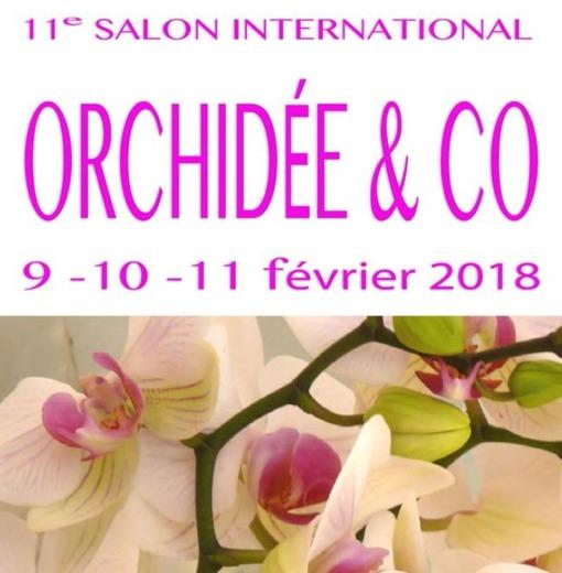 Salon orchidées Bouc-Bel-Air 15161710