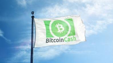 Bitcoin Cash (BCH). 443_e897