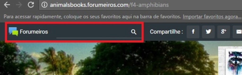 FIXED HOW TO SEARCH BOOKS Buscar12