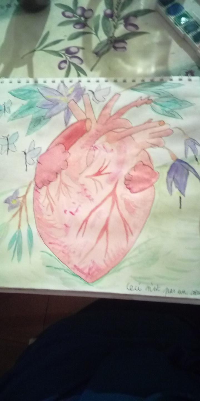 Mes dessins et autres...  Img_2252
