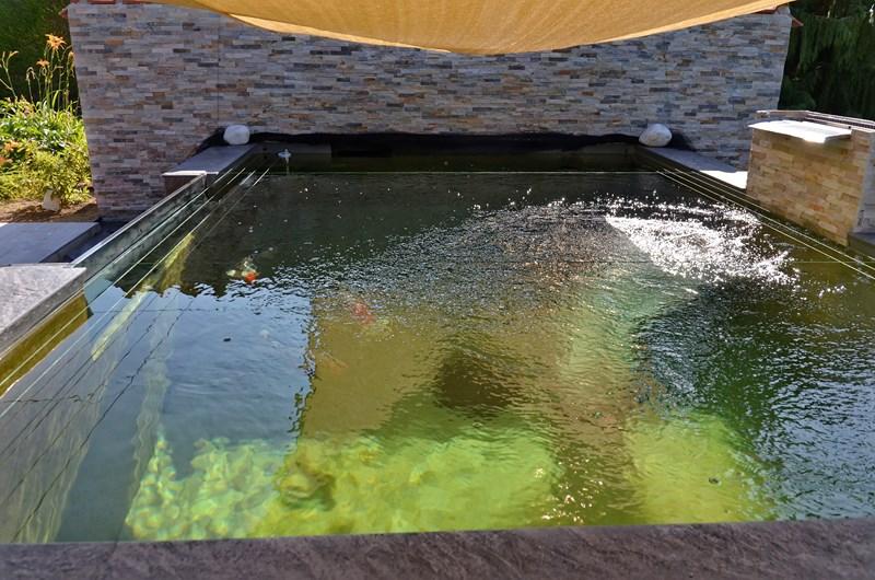 Vivier (bassin) de 15 m3 pour Koï,  en blocs à banchés, mode gravitaire, semi hors de 600 - Page 2 Dsc_3617