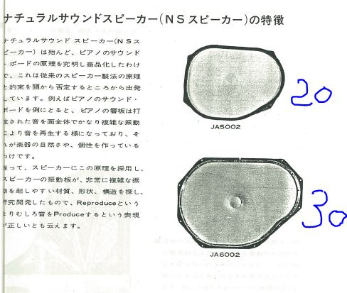 Yamaha NS20 y NS30 - Página 2 Wof_2010