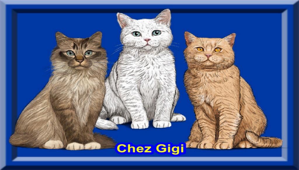 Chez Gigi