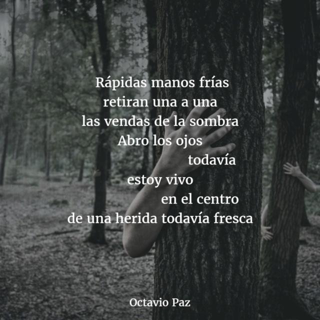 ^Tu poema o escrito del día^ - Página 5 Poemas11
