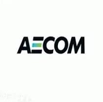 3 وظائف إدارية جدية في شركة إيكوم العالمية للرجال والنساء 11051