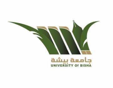 380 وظيفة أكاديمية للرجال والنساء في جامعة بيشة 1805