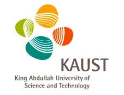 وظائف إدارية وسكرتارية في جامعة الملك عبد الله للعلوم والتقنية 2657
