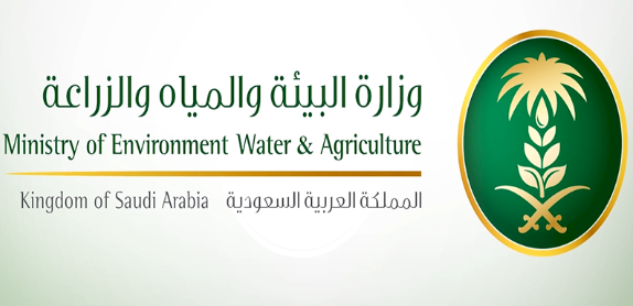 13 وظيفة جديدة في وزارة البيئة والمياه والزراعة ومنظمة الأغذية والزراعة للأمم المتحدة 6239