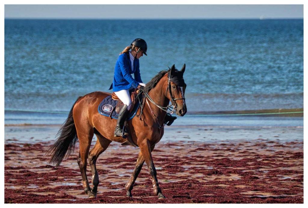 [Sport] caval' océan - Page 2 Cavoce10
