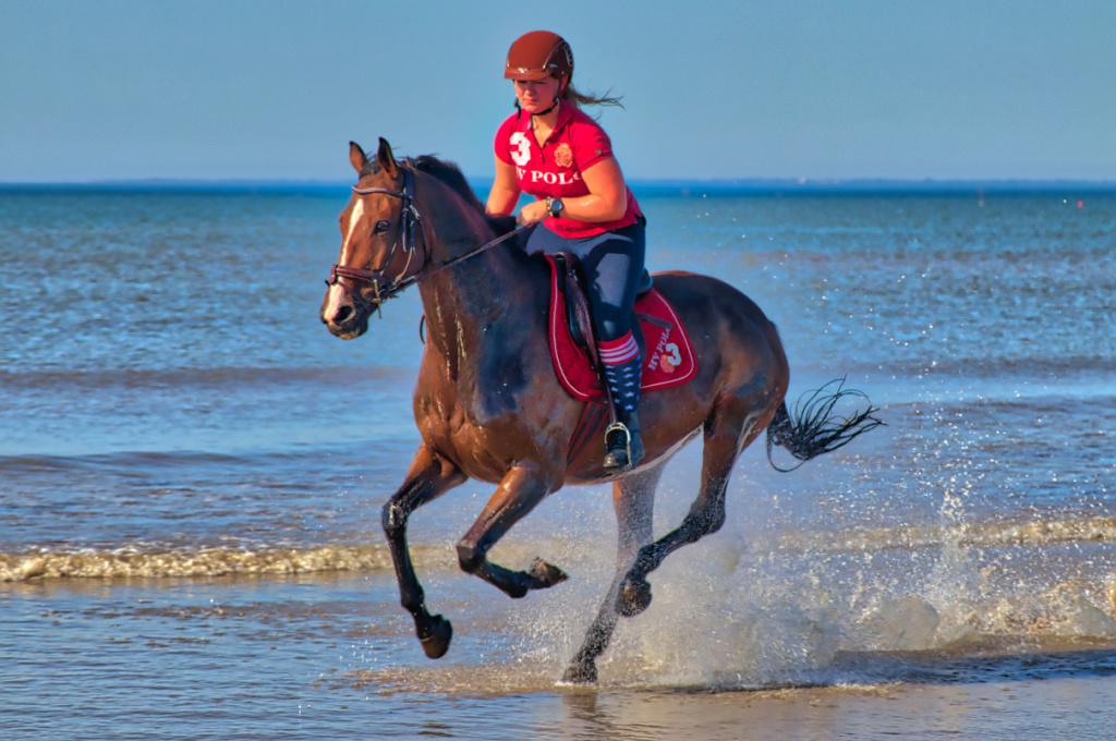 [Sport] caval ocean .2 Cavoce12