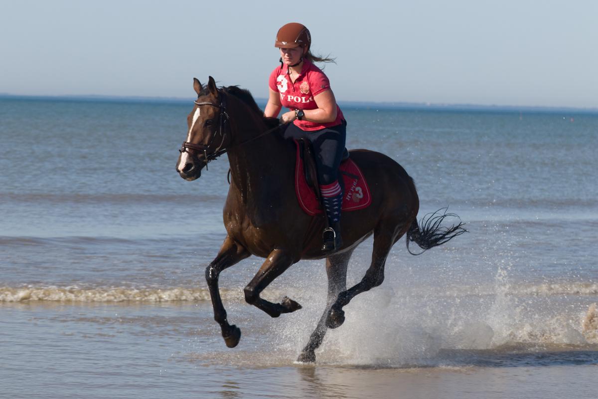 [Sport] caval ocean .2 Cavoce14