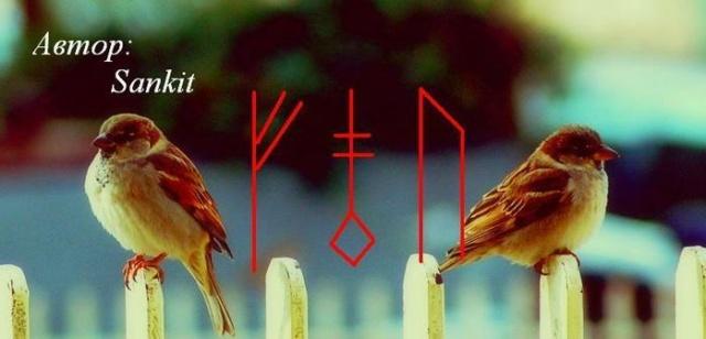 """Став """"Рассорка на птиц""""  13602710"""