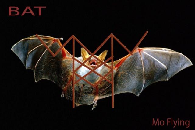 """""""BAT""""- вязь , для прочищения каналов 56310"""