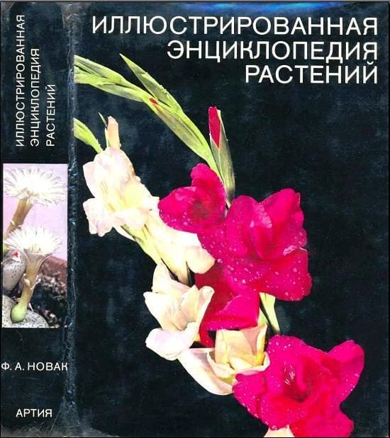 Иллюстрированная энциклопедия растений 5c6eba10