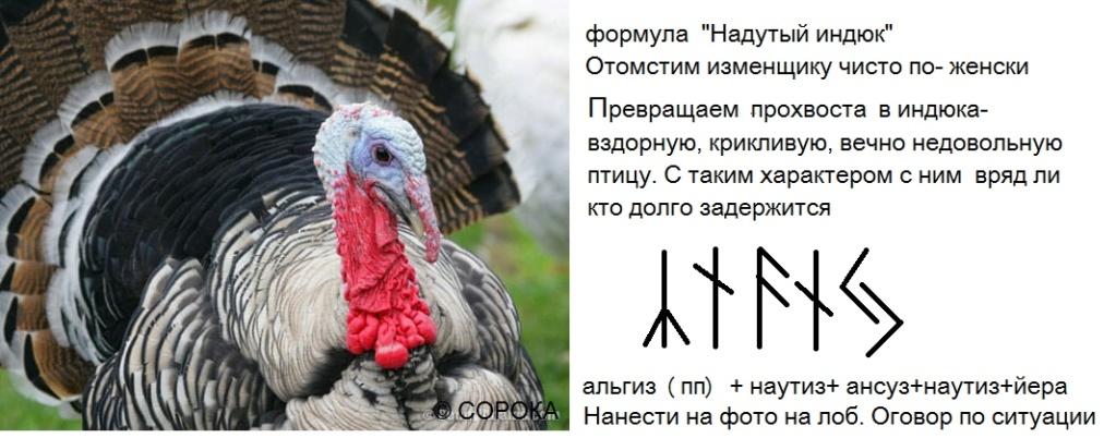 """Формула """"Надутый индюк"""" As56v410"""