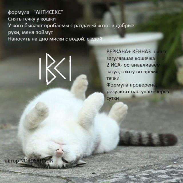 """Формула""""Антисекс""""  Bp1y8d10"""