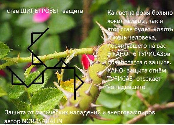 """Став """"Шипы розы"""" Eoeczg10"""
