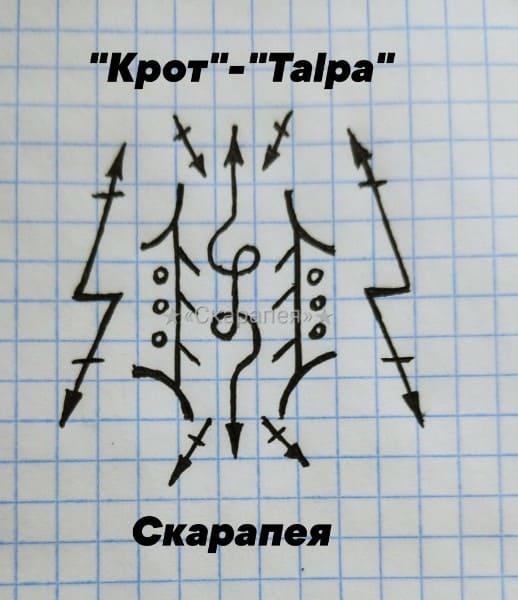 """Крот"""" - """"Talpa"""" Nzcue110"""