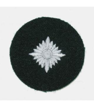 """L'uniforme """"Der Grüne Landser"""" Grade-10"""