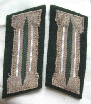 """L'uniforme """"Der Grüne Landser"""" Img_5310"""