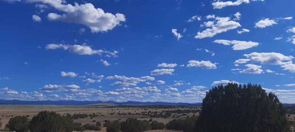 This is Arizona 20210610