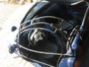 soucis casse tube intérieur de la capote Img_6310