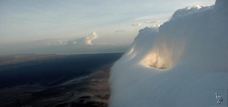 Le nuage de gloire du matin  Carpen14