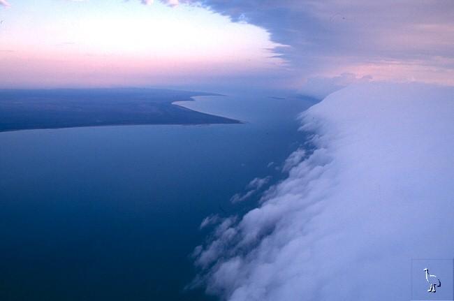 Le nuage de gloire du matin  Carpen15