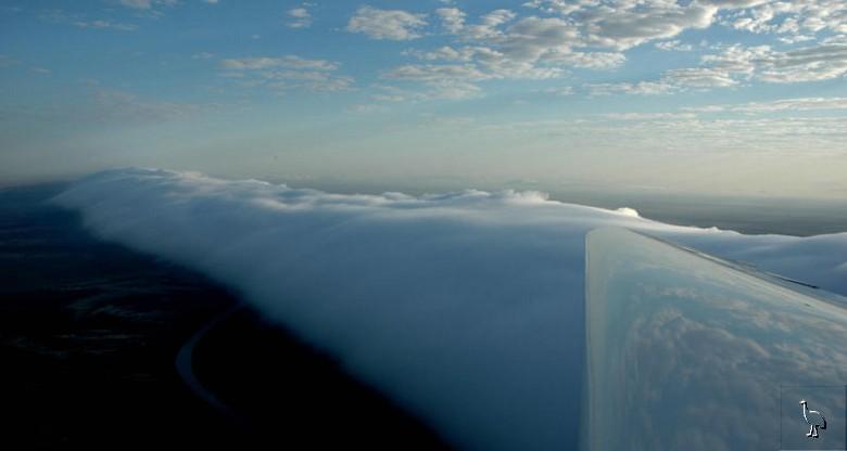 Le nuage de gloire du matin  Carpen16