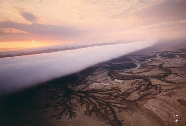 Le nuage de gloire du matin  Carpen19