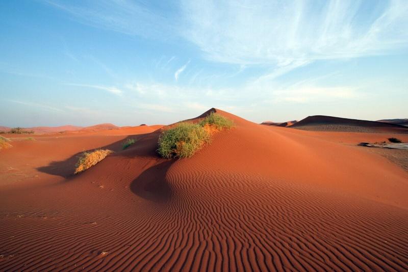 Recit de voyage en Namibie Namibi14