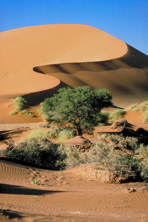 Recit de voyage en Namibie Namibi30