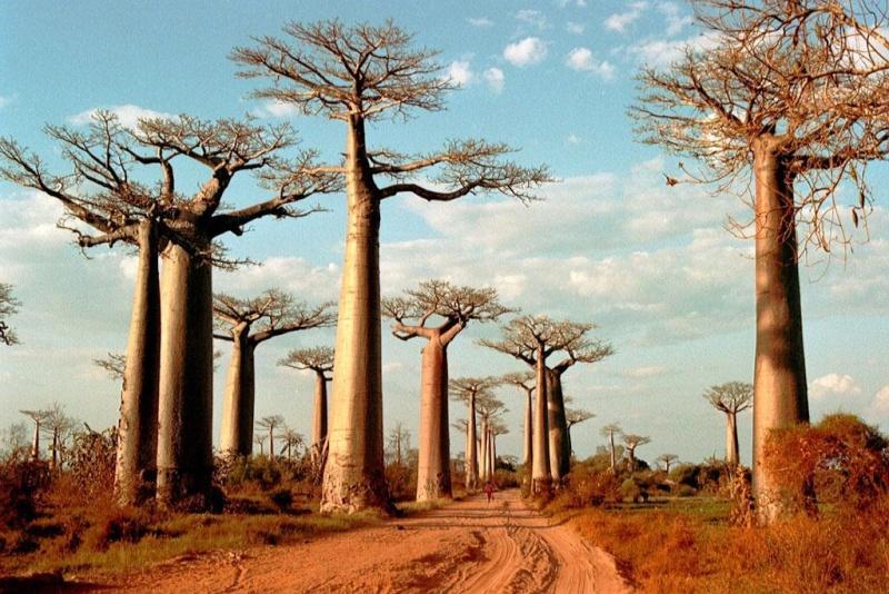 Recit de voyage en Namibie Namibi32