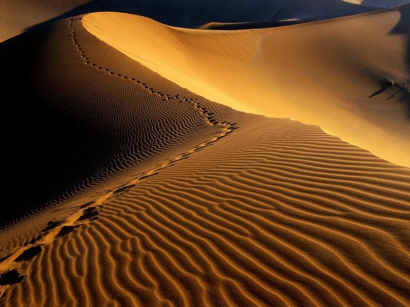 Recit de voyage en Namibie Namibi35