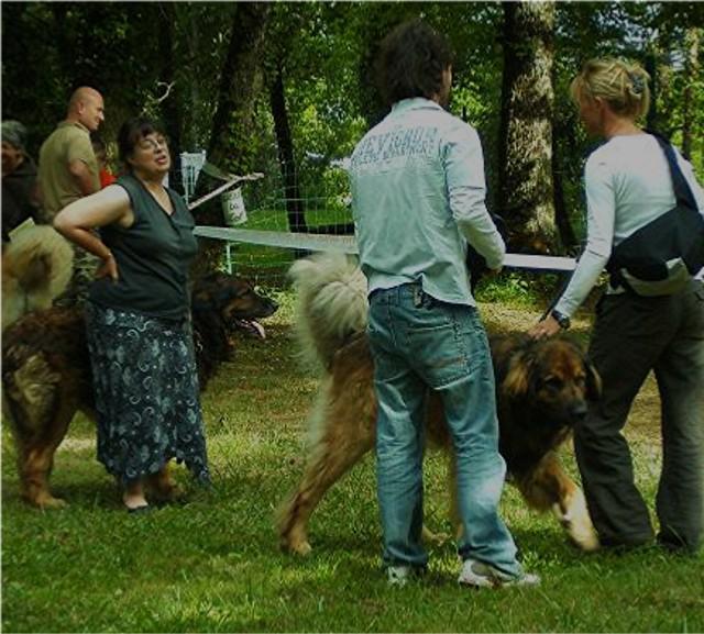 Exposition régionale d'élevage - Bannac 2008 Bannac15