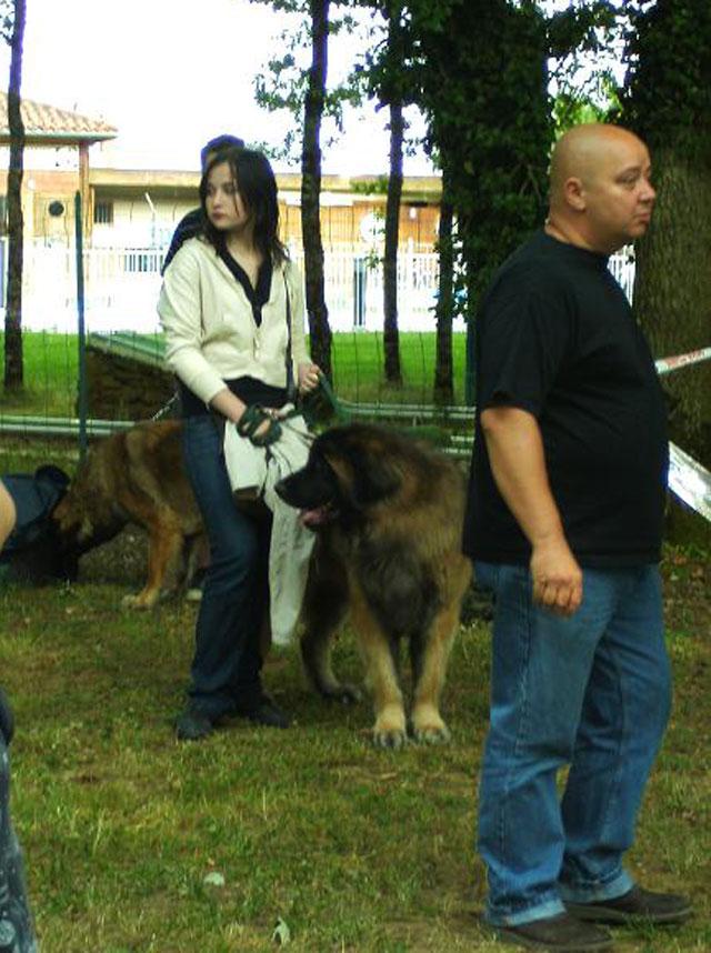 Exposition régionale d'élevage - Bannac 2008 Bannac16