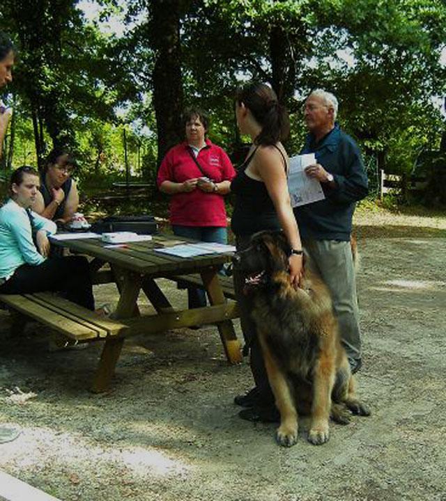 Exposition régionale d'élevage - Bannac 2008 Bannac21