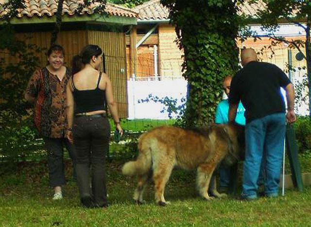 Exposition régionale d'élevage - Bannac 2008 Bannac23