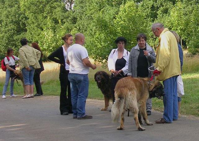 Exposition régionale d'élevage - Bannac 2008 Bannac39