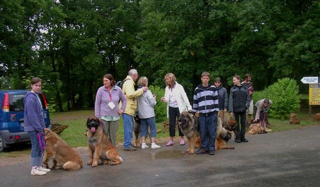 Exposition régionale d'élevage - Bannac 2008 Bannac55