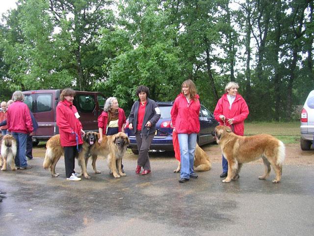Exposition régionale d'élevage - Bannac 2008 Bannac56