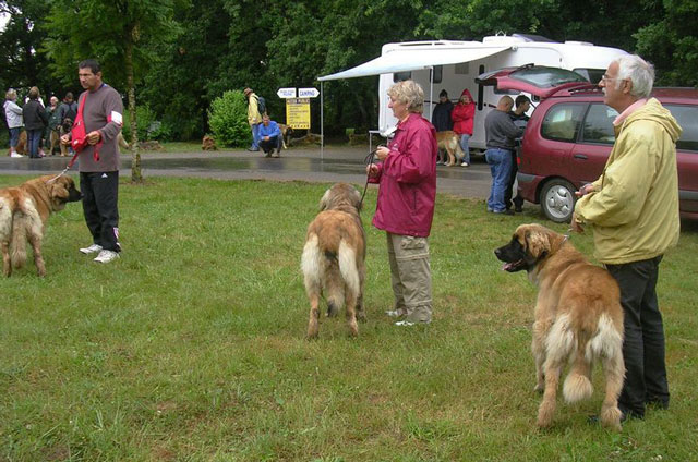 Exposition régionale d'élevage - Bannac 2008 Bannac59