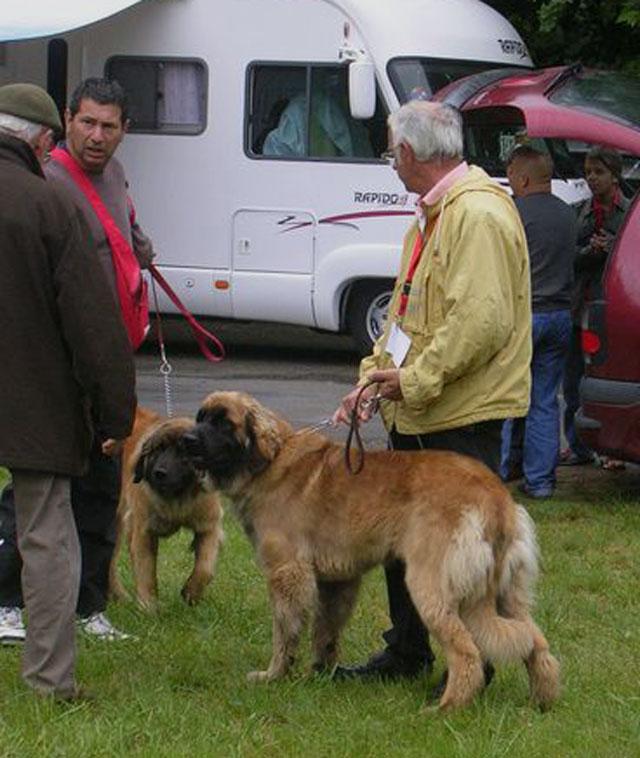 Exposition régionale d'élevage - Bannac 2008 Bannac60