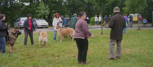 Exposition régionale d'élevage - Bannac 2008 Bannac63