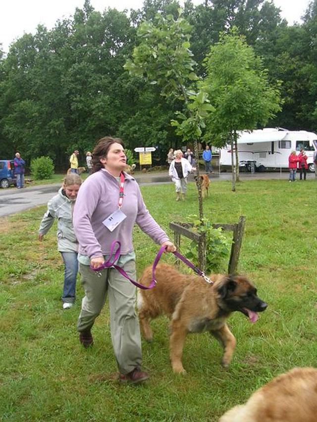 Exposition régionale d'élevage - Bannac 2008 Bannac66