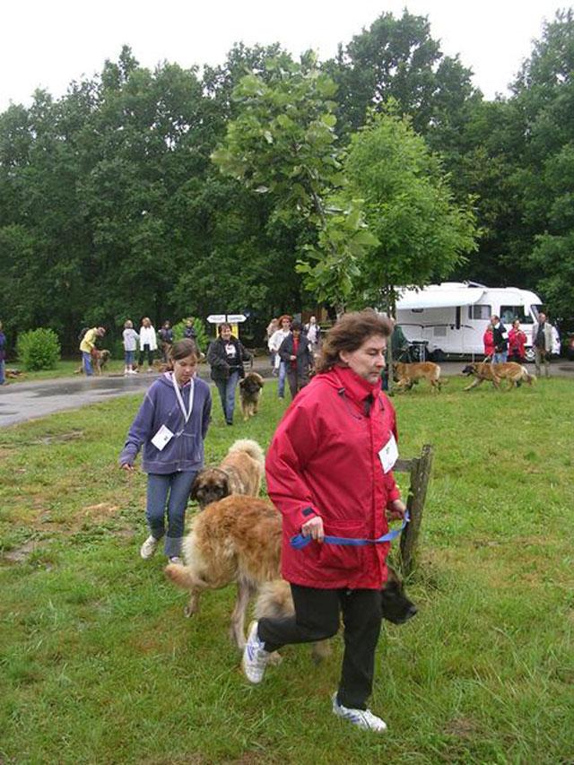 Exposition régionale d'élevage - Bannac 2008 Bannac70
